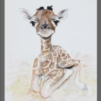 akwarela- żyrafa